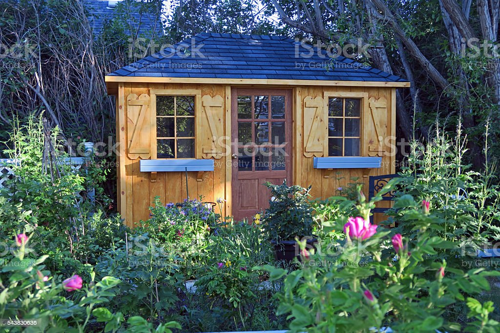 Quaint garden shed in a flower garden with roses stock photo