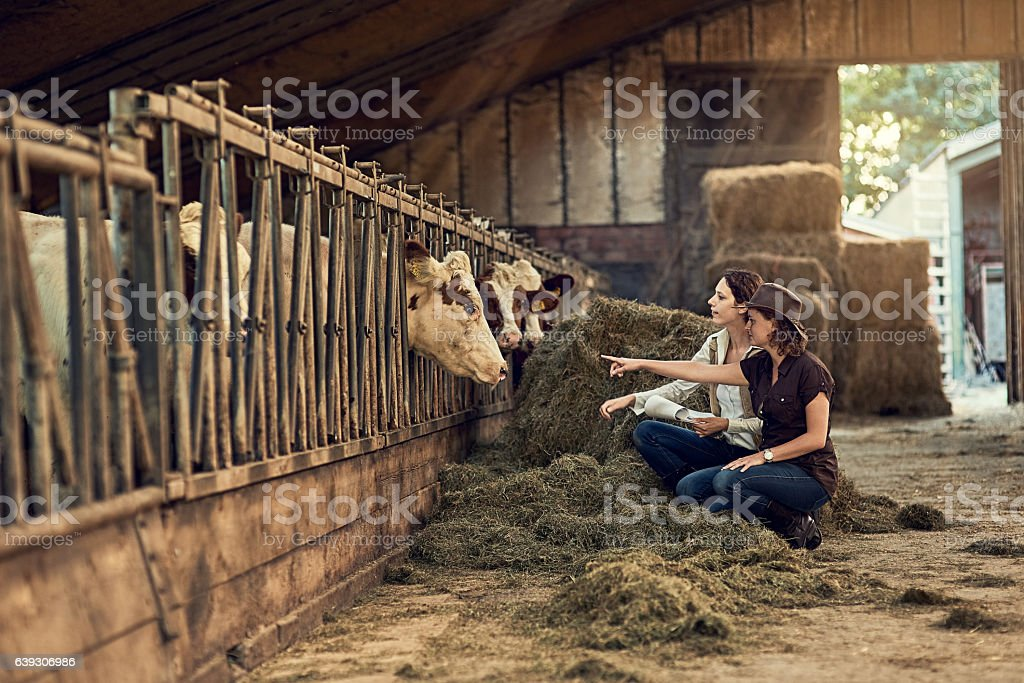 Quality control is everything stock photo