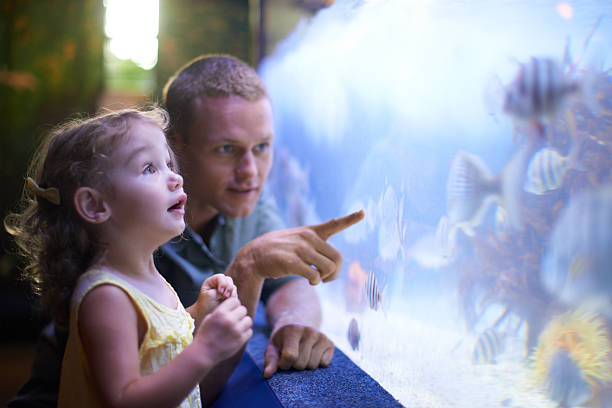 Quality time with her father and the fish Shot of a father and daughter enjoying a day at an aquariumhttp://195.154.178.81/DATA/i_collage/pi/shoots/783341.jpg aquarium stock pictures, royalty-free photos & images