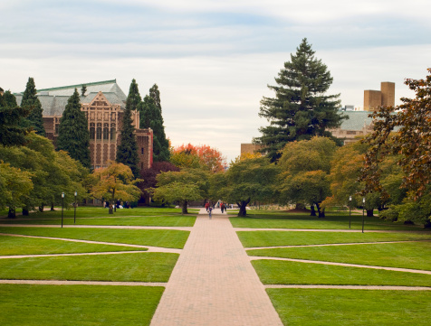 Quandrangle Lawn At The University Of Washington Stock Photo - Download Image Now