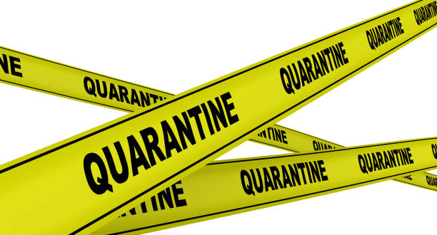 quarantine. yellow warning tapes - quarantena foto e immagini stock