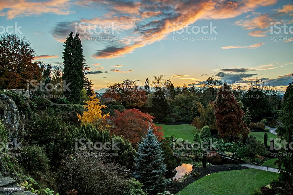 Queen Elizabeth Park with autumn colours at sunset, Vancouver, Canada stock photo