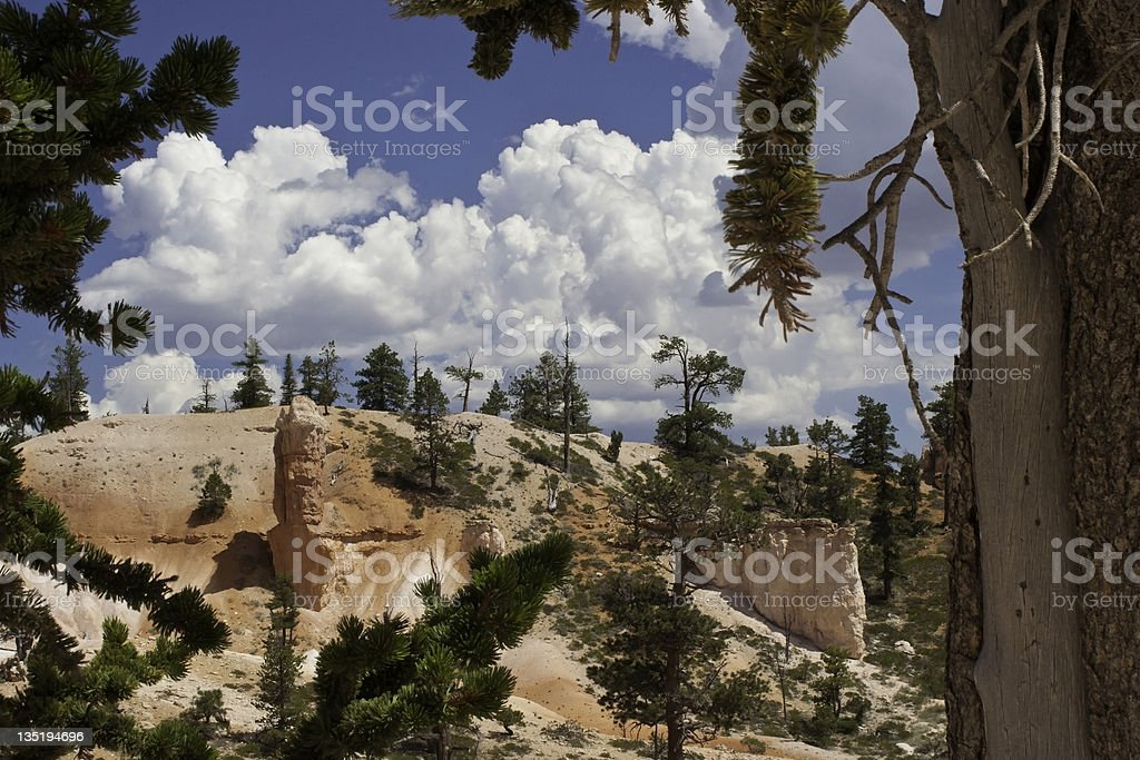 Queen Victoria Trail in Bryce Canyon, Utah stock photo