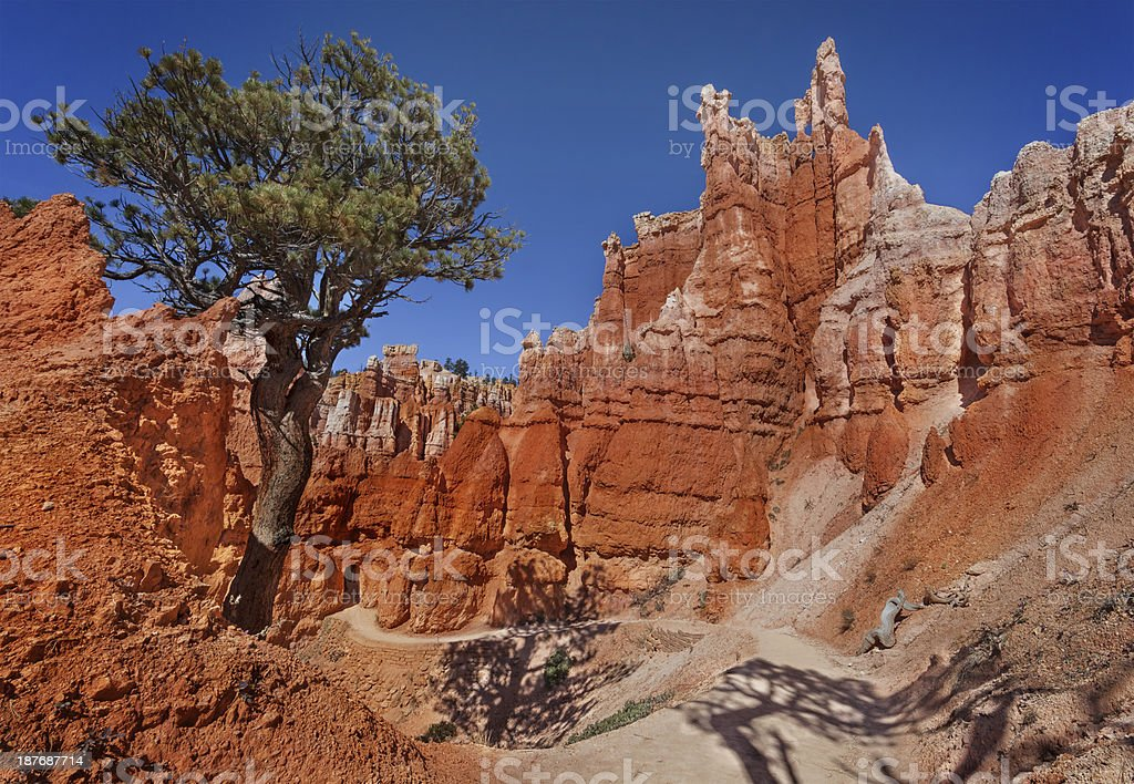 Queen's Garden, Bryce Canyon stock photo