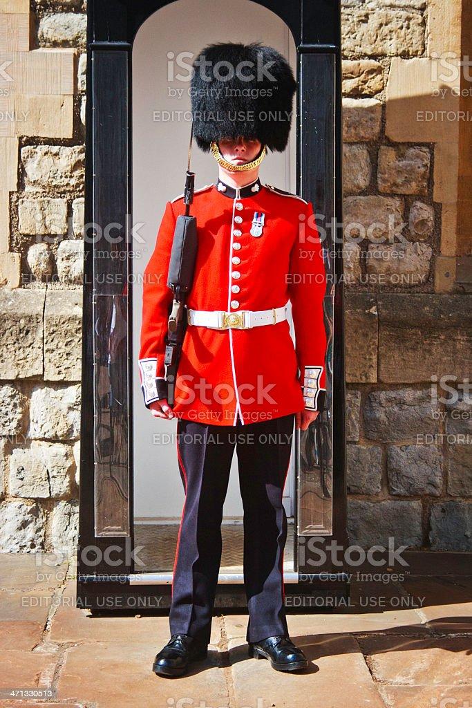 Queen's Guard, London, England stock photo