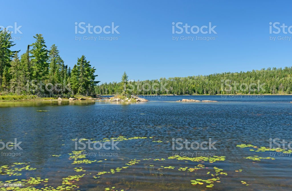 Quiet Bay in the North Woods stock photo