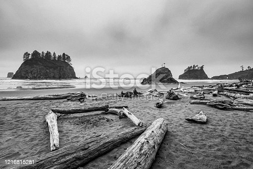 istock Quiet beach among the boulders and snags trees. Ruby Beach, Olympic National Park, Washington state, USA 1216815281