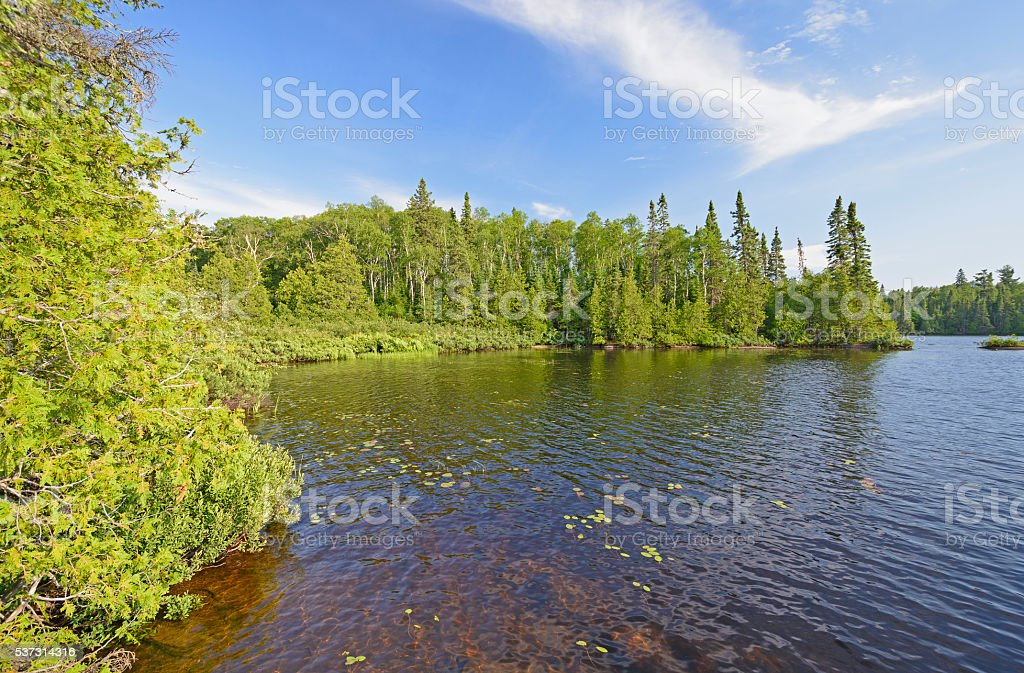 Quiet Cove in a North Woods Lake stock photo