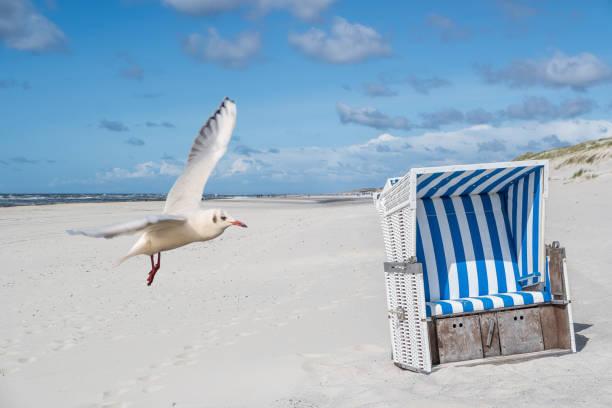 ruhigen tag am strand - urlaub norderney stock-fotos und bilder