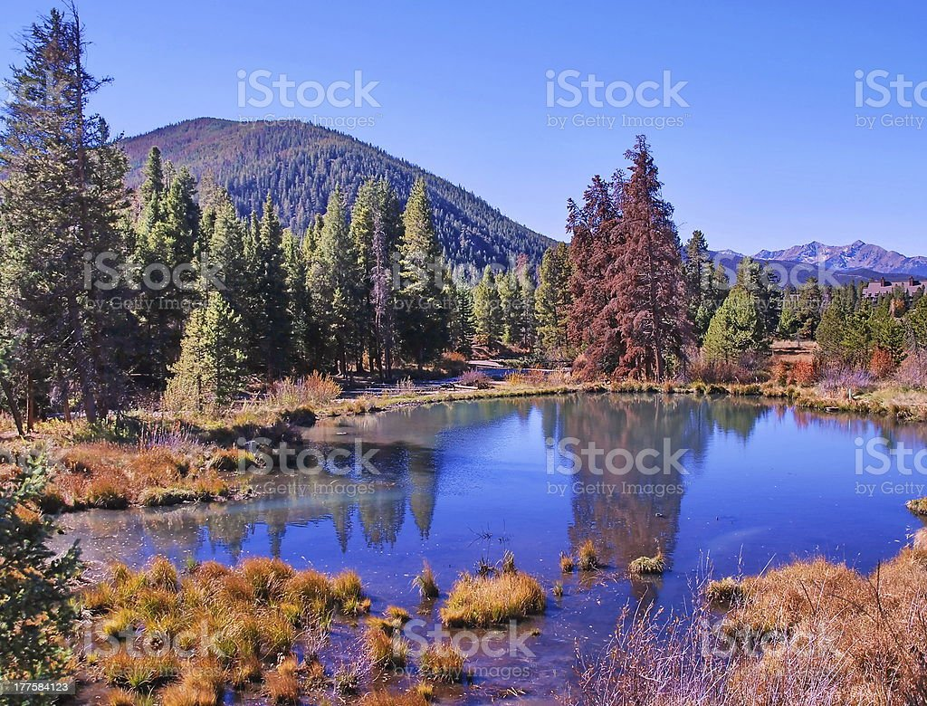 Quiet Fall Morning in Colorado royalty-free stock photo