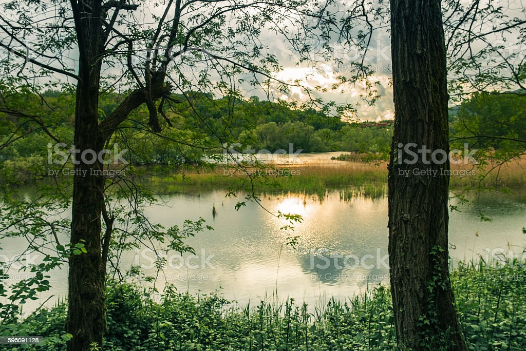 Quiet Lake and Vegetation at Sunset royalty-free stock photo