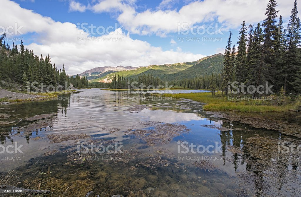 Quiet Lake in the Wilderness stock photo