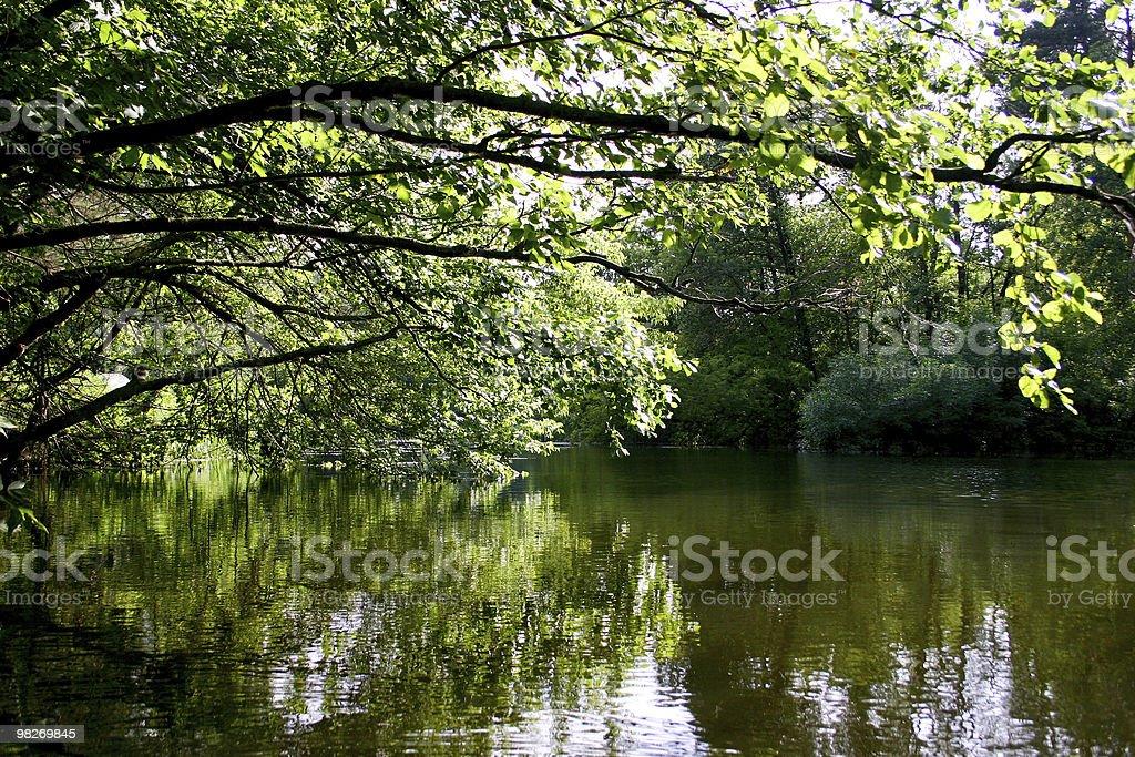 Quiet lake royalty-free stock photo