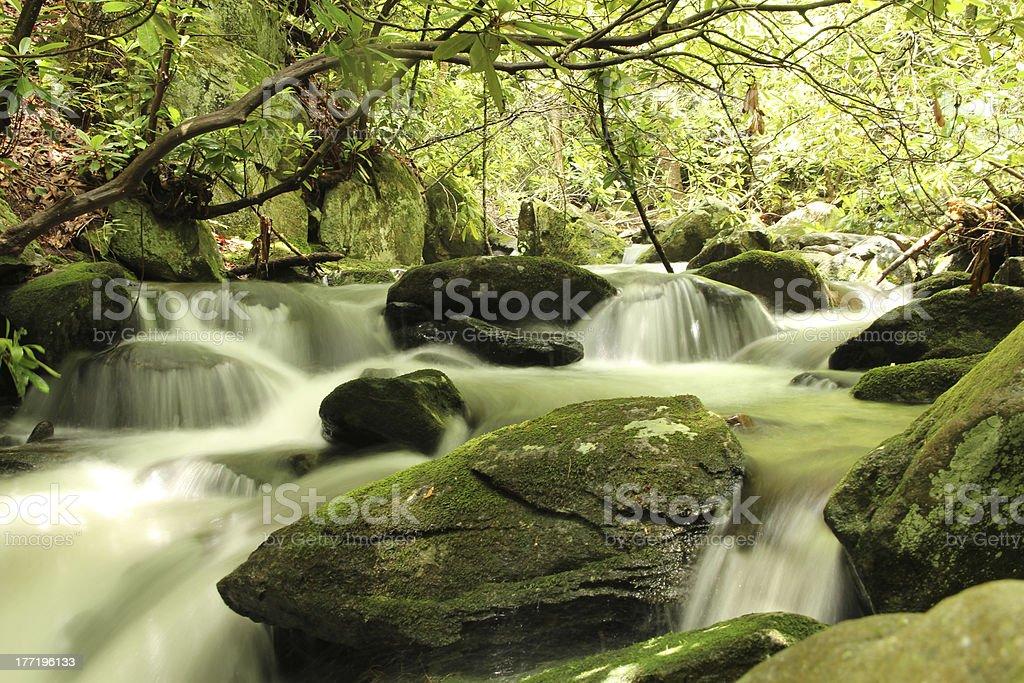 Quiet mountain stream royalty-free stock photo