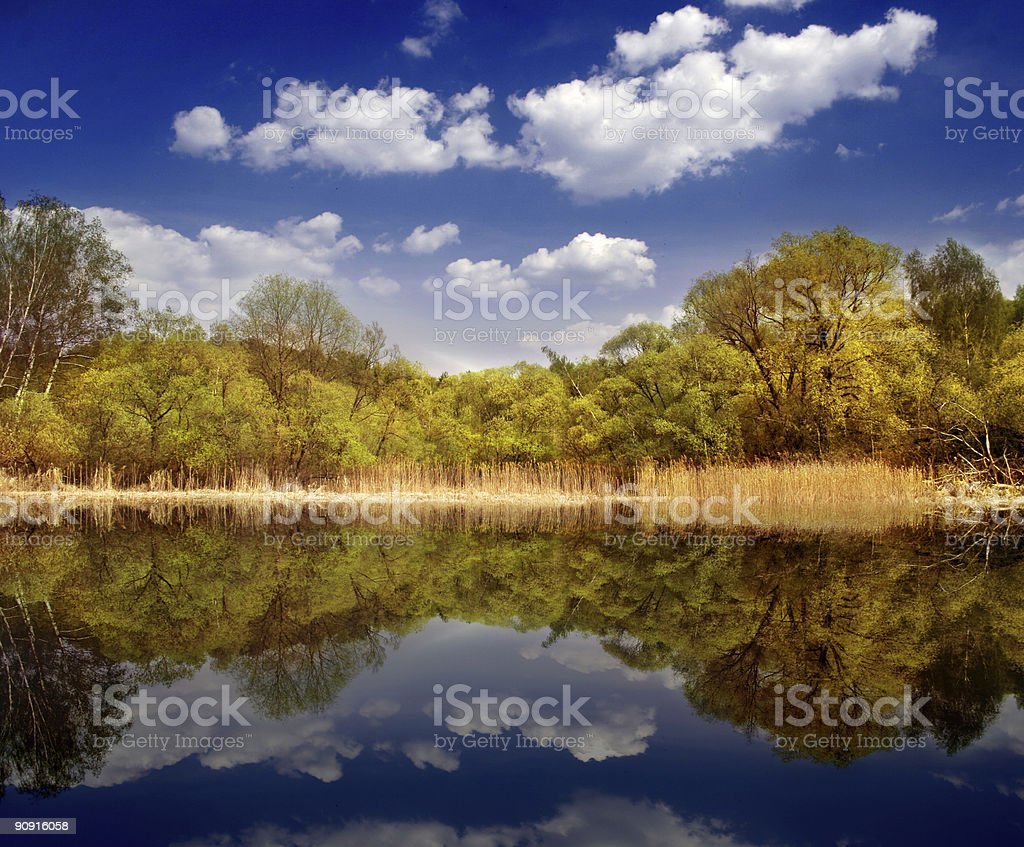 Quiet nature place royalty-free stock photo
