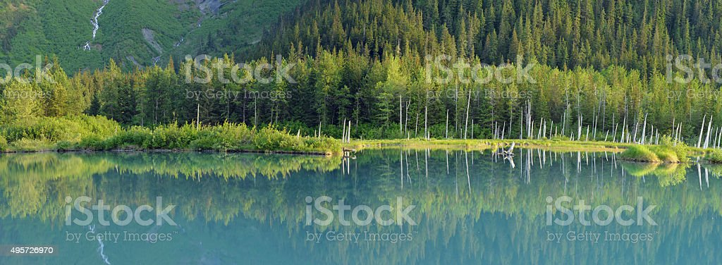 Quiet pond, Alaska stock photo
