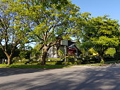 Vancouver.  Quiet residential street with well maintained landscaping. No traffic. Old trees