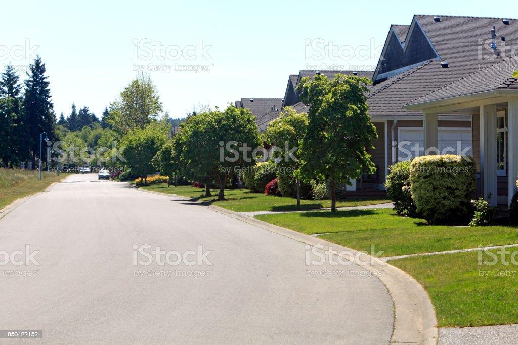 Quiet Residential Treelined Street stock photo