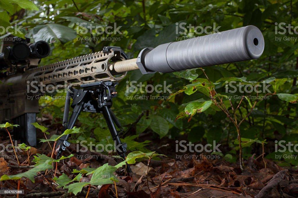 Quiet shoots stock photo