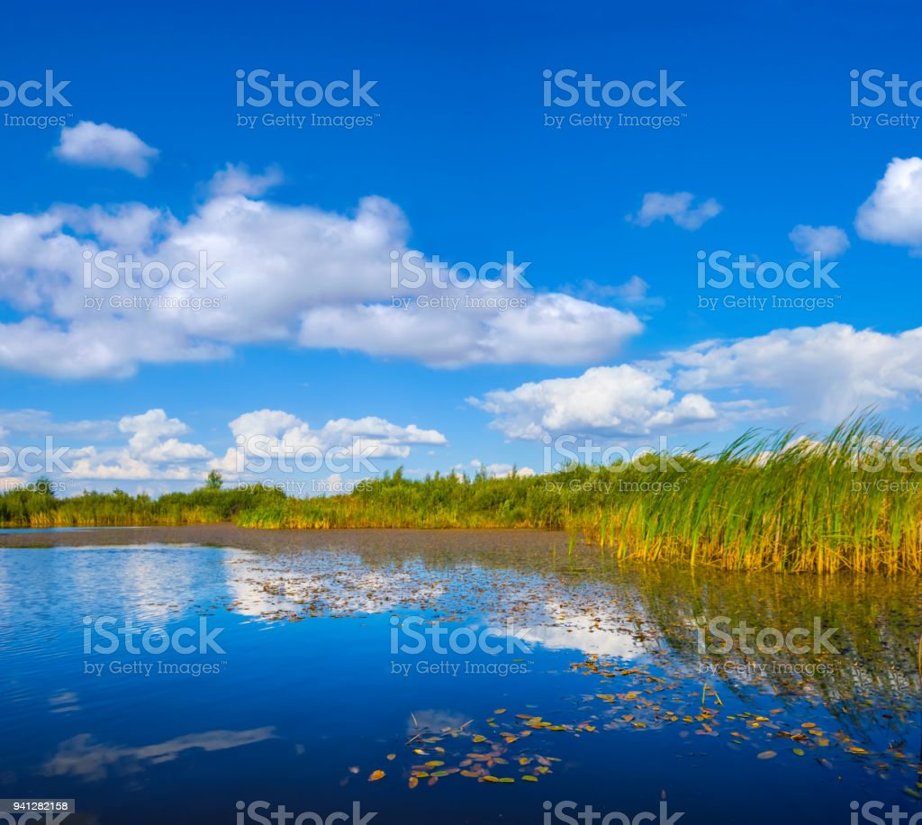 quiet small lake among a prairies at the hot summer day stock photo