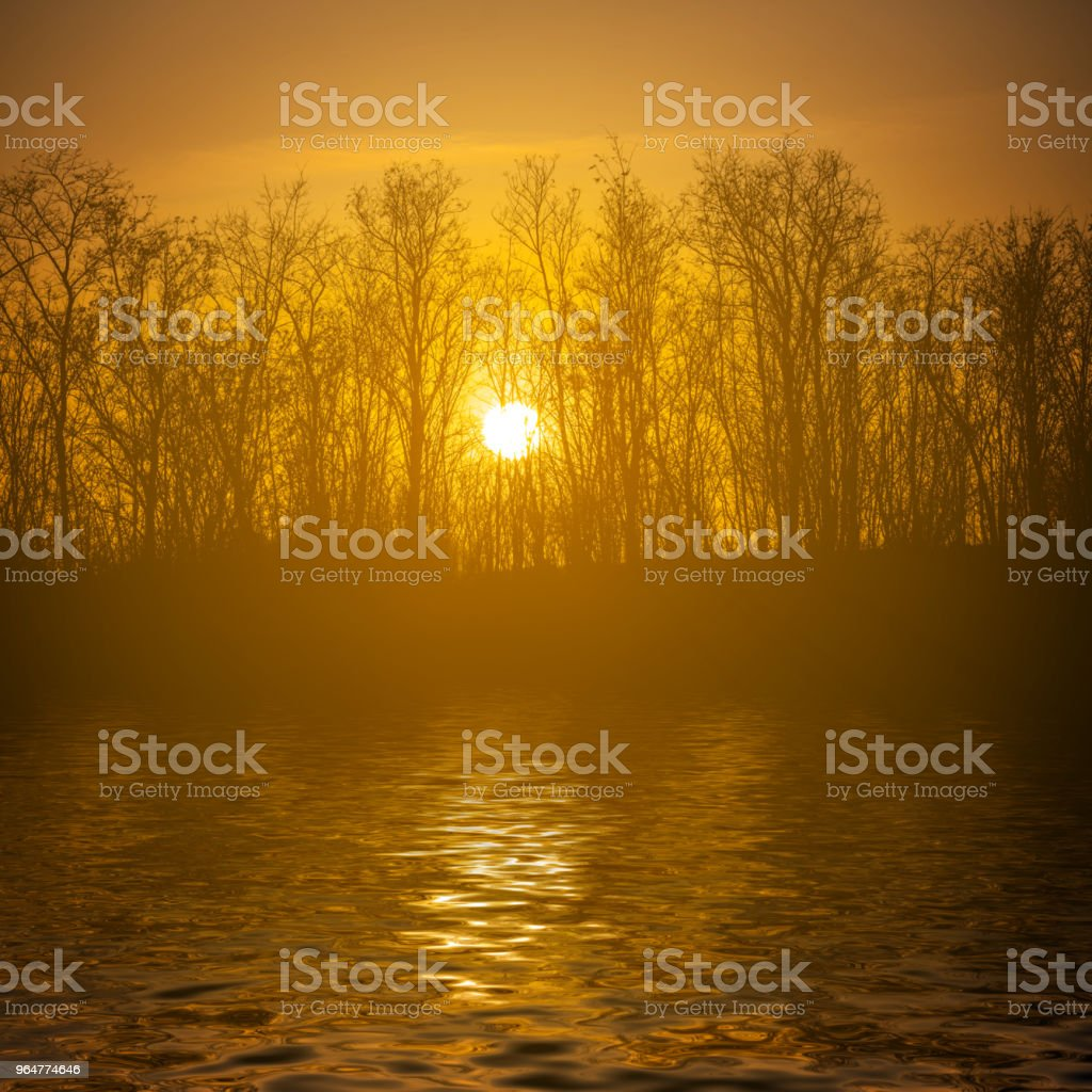 quiet sunset over a forest lake reflected in a water royalty-free stock photo