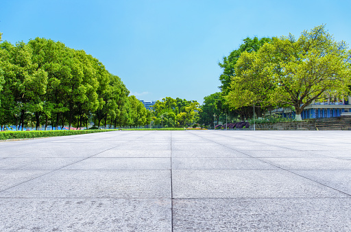 Quiet unmanned park and square on a sunny summer day