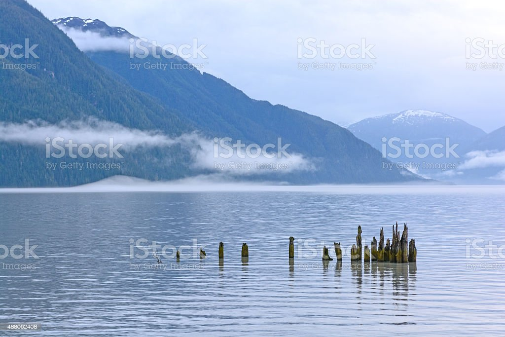 Quiet Waters on a Foggy Coast stock photo