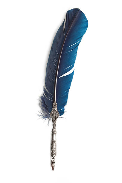 quill pen - quill stock photos and pictures