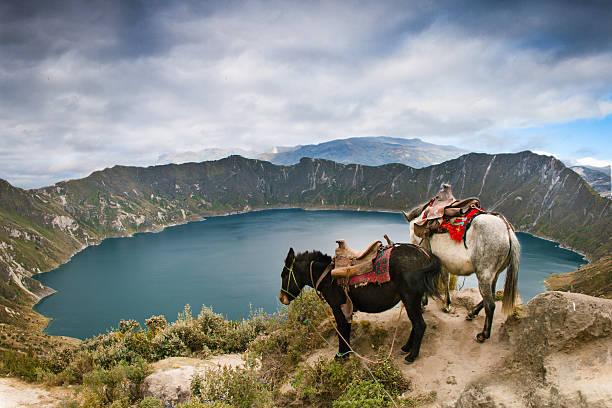 quilotoa 크레이터 레이브 - 에콰도르 뉴스 사진 이미지