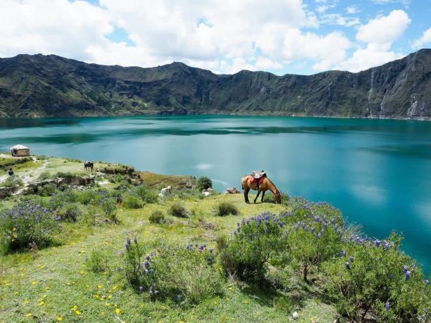 quilotoa lagon latacunga, 에콰도르에 - 에콰도르 뉴스 사진 이미지