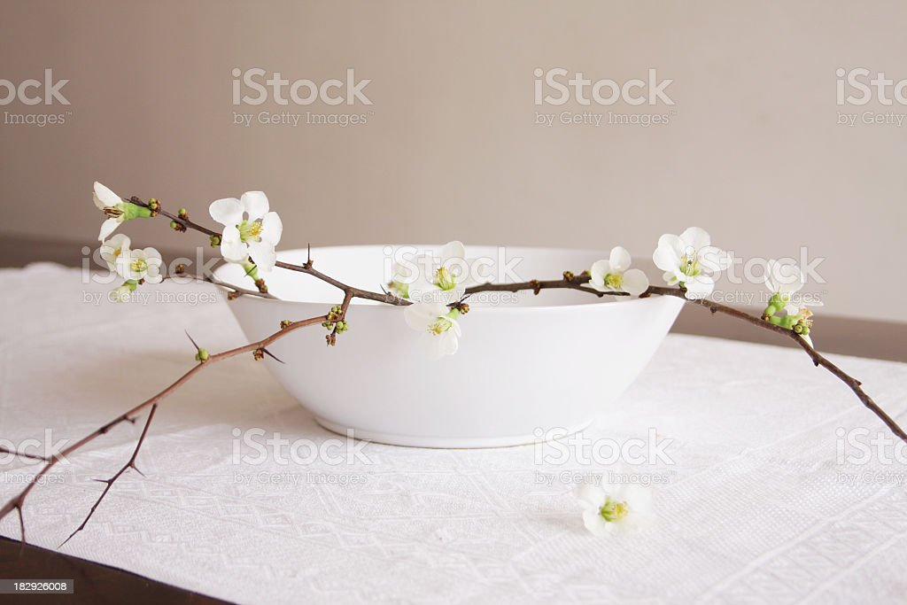 Quince branch with white flowers bouquet on table royalty-free stock photo