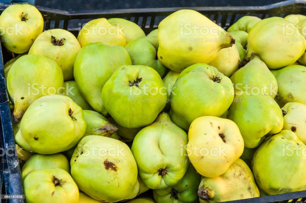Quince fruit on display at the market royalty-free stock photo