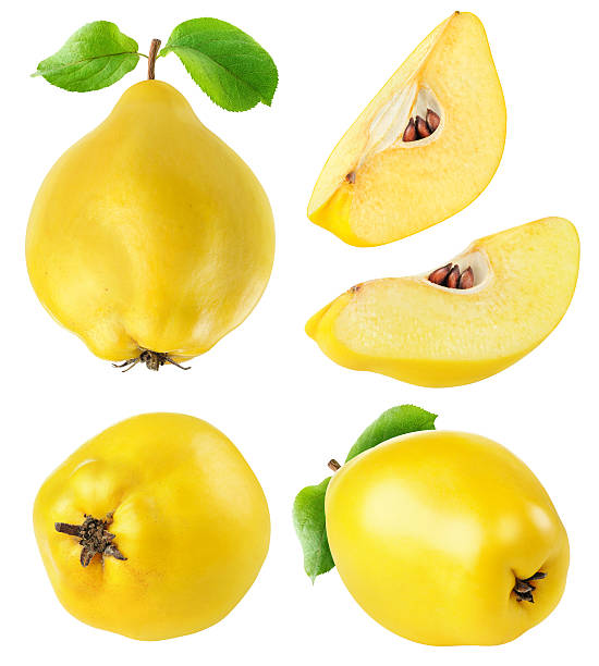 Quince fruits whole and cut collection isolated on white stock photo