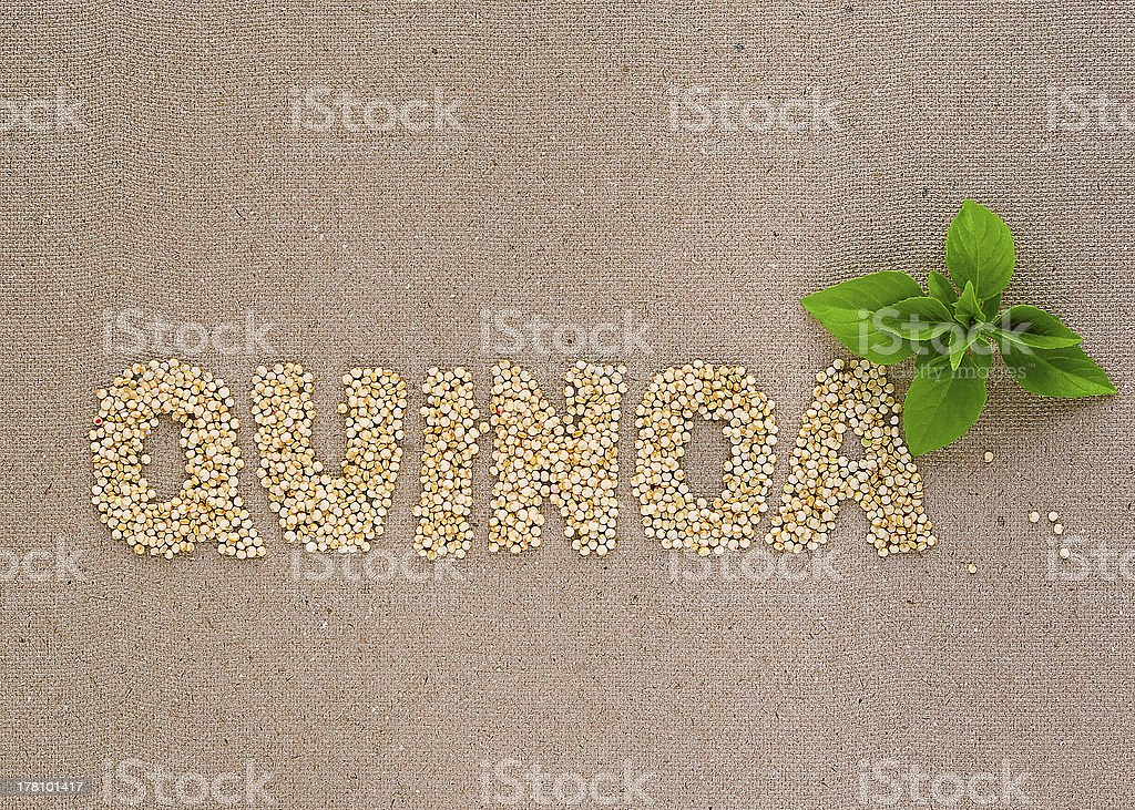 Quinoa word with basil stock photo