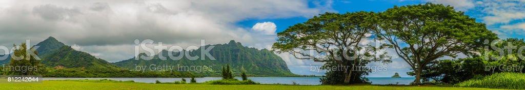 Quintessential Hawaii stock photo