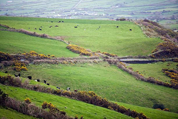 Quintessential Ireland stock photo