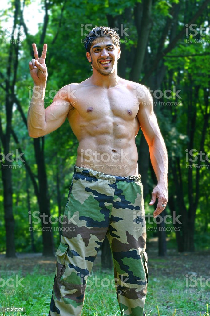 """""""V"""" is for Victory royalty-free stock photo"""