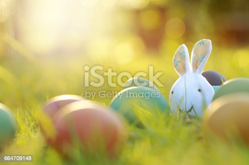 istock Rabbit and colorful Easter eggs in nature. 664709148