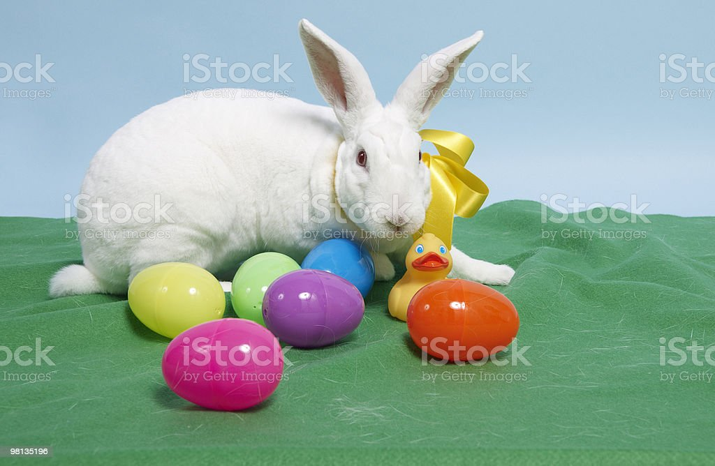 Rabbit and Easter eggs royalty-free stock photo