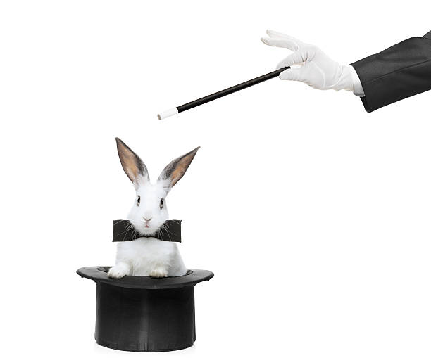 Rabbit and magic wand A rabbit in a hat and hand holding a magic wand isolated on white background magician stock pictures, royalty-free photos & images