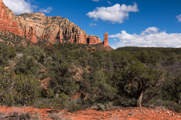 Rabbit Ears Rock Formation is within Coconino National Forest, Arizona. stock photo