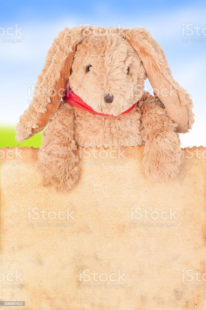 Rabbit, holding old grunge canvas fabric burn edge stock photo