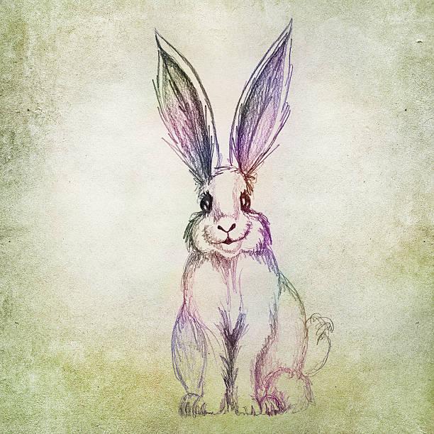 kaninchen auf grünes blatt hintergrund abbildung - osterhase zeichnen stock-fotos und bilder