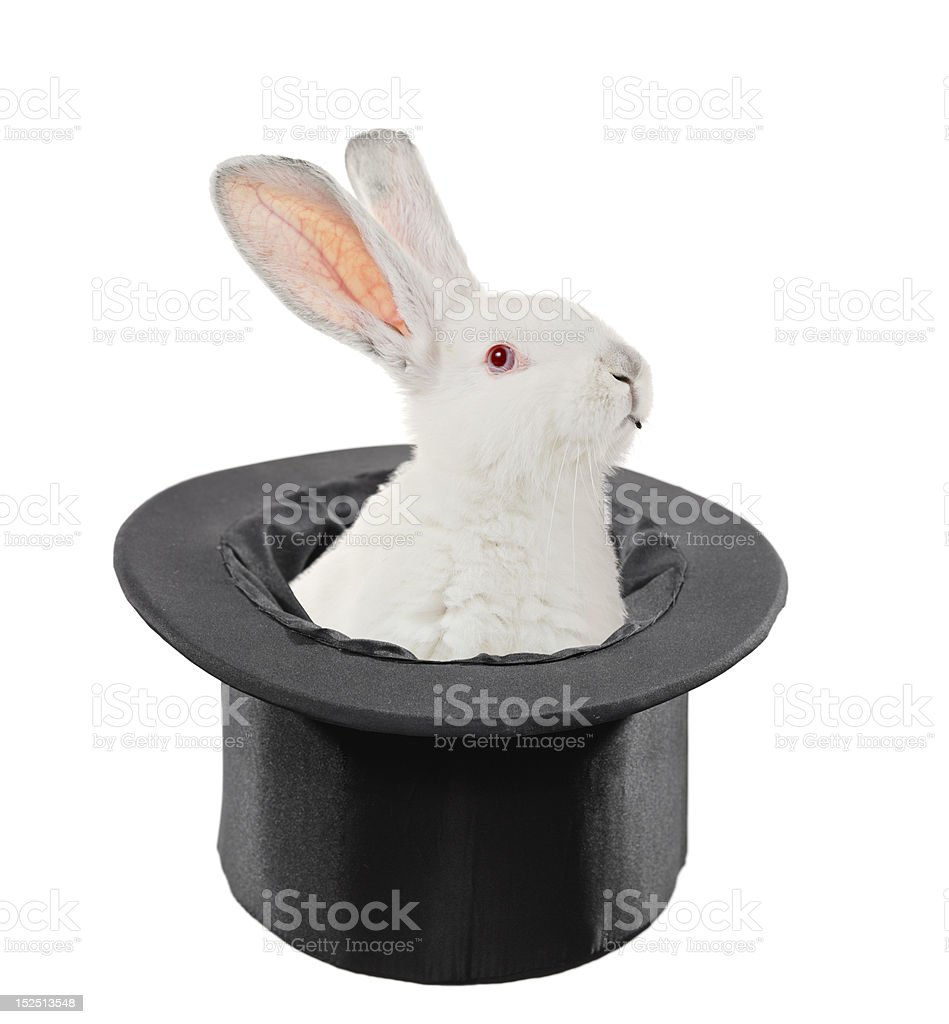 Rabbit in a top hat stock photo