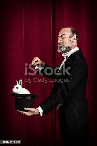 Rabbit in tophat of magician