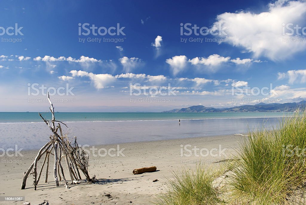 Rabbit Island, Nelson, New Zealand stock photo