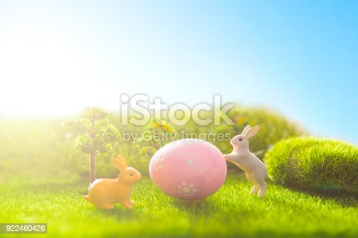 930928526 istock photo Rabbit on grass with Easter eggs in park 922460426