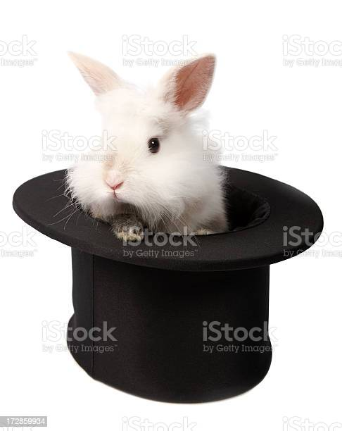 Rabbit picture id172859934?b=1&k=6&m=172859934&s=612x612&h=d7hgqo8ilv2xrcpcndtokhil33ntkikl9azpbl dmfm=