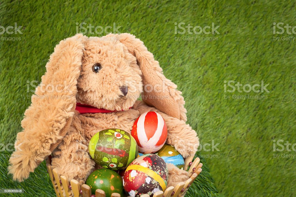 Rabbit, sit and holding empty basket on grass stock photo