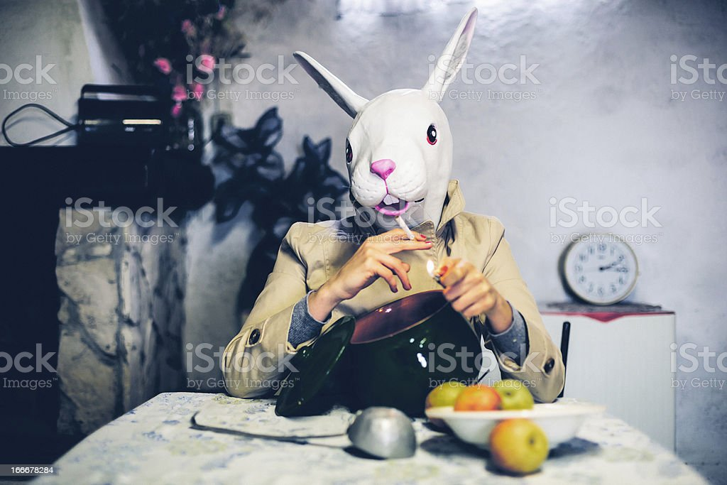 Rabbit Smoking after Lunch stock photo